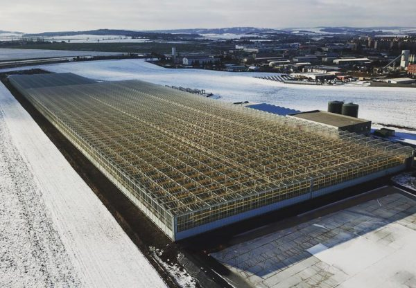 Venku zima, ale ve skleníku krásných 23,5°C